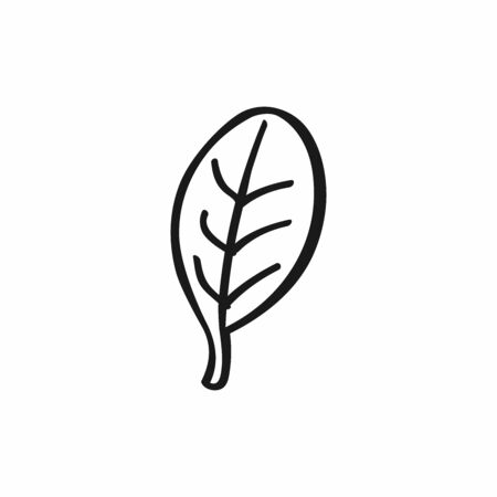 Abstract doodle leaf. Icon, symbol drawn by hand. Isolated vector illustration.