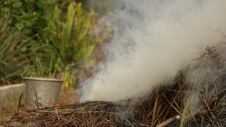 Smoke from Burnt Straw in Garden with Vintage Steel Bucket