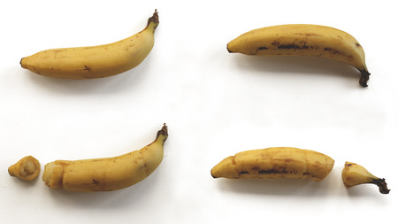 Broken and Intact Bananas on White Background