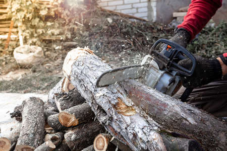 Professional chainsaw cuts firewoods. Lumberjack working with chainsaw, cutting wood.