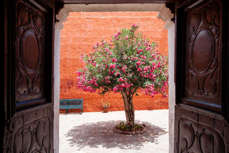 Monastery of Santa Catalina, Arequipa, Peru, flowering tree view. Ancient carved doors, orange walls and a bench near a flowering tree in the courtyard