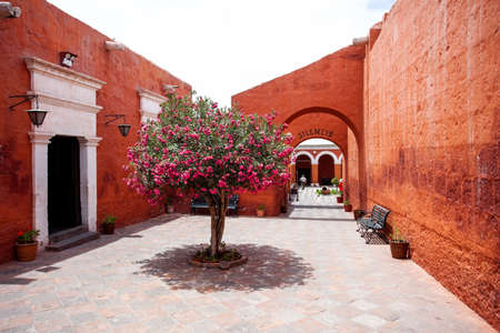 A tree grows in the yard in monastery Saint Catalina, Arequipa, Peru. Bench, arch, door, tree Stock Photo