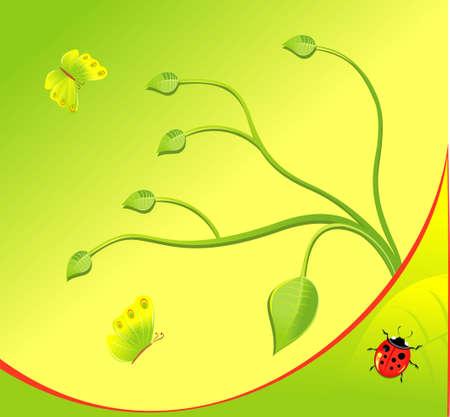 ladybug: Summer background with ladybug and green leaves