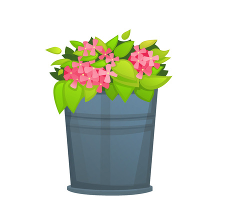 Pink Flower with green leaf in metallic bucket pot.