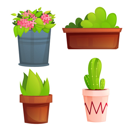 Landscape garden potted plants with pink flowers and cactus. Banque d'images - 121025956