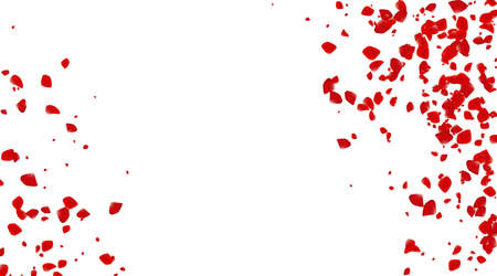 The Rose confetti on a white background. The Red flowers blossom. The Romantic creative composition. The Love concept. Иллюстрация
