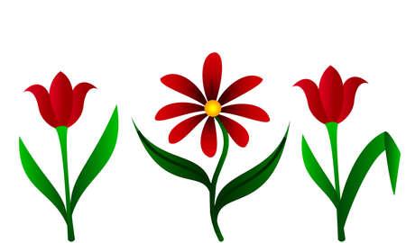 tulipes Vecteurs