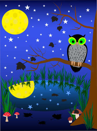 eagle owl:  illustration of dark night background. owl