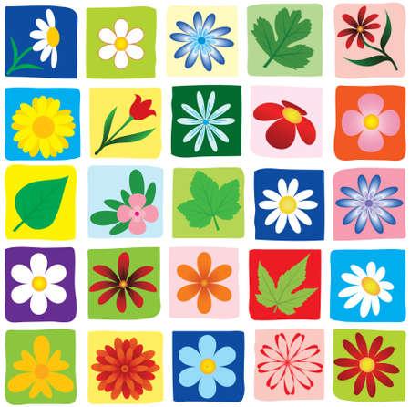 vector flowers: set flowers. vector  Illustration