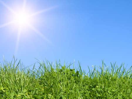 green field on blue sky  photo