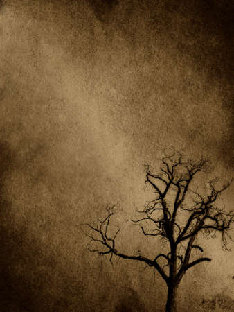 grunge edge: abstract tree background
