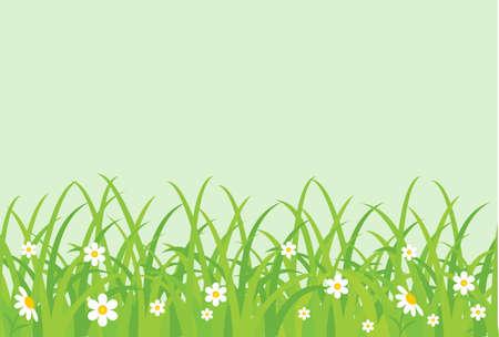 zomertuin: Grasachtig veld. Vectorillustratie