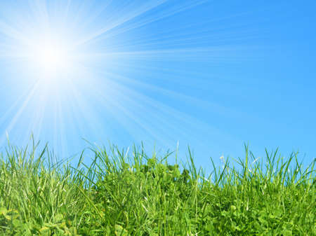 green grass on blue sky Stock Photo - 8628191