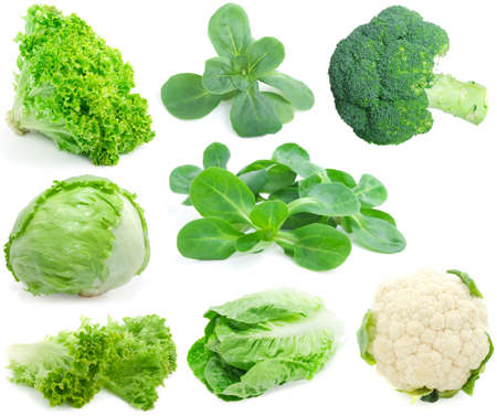 cabbage and green vegetable collection isolated on white background 