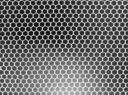 contrasts: mosquito net
