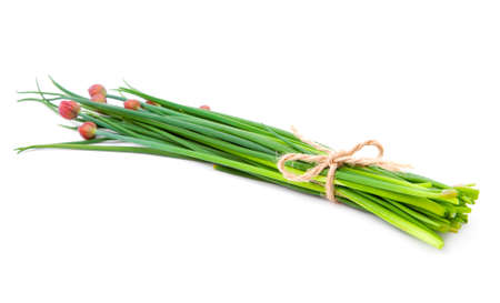 green onion (Chive), isolated on the white background  photo