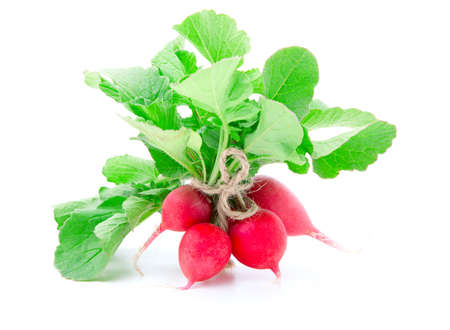 bunch of fresh radish with leaves, isolated on white  photo