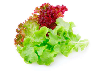 romaine: lettuce leaves on a white background
