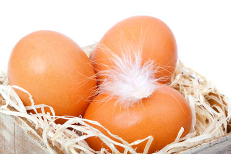 brown eggs at hay, in the old box Stock Photo - 12273793