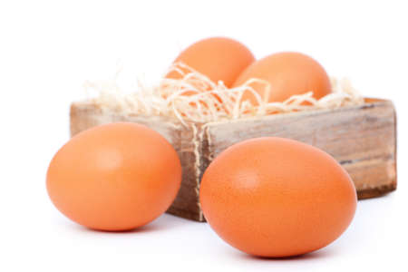 brown eggs, on white background photo
