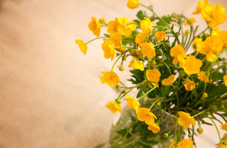 buttercup: yellow buttercup flowers, with room for text