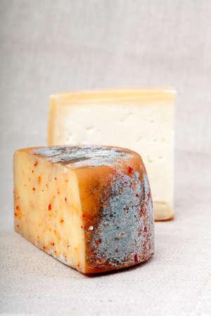 moldy: cheese