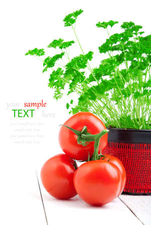 Red tomato with parsley on wooden white background. photo