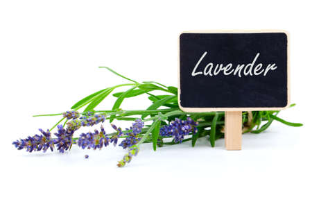 a bunch of lavender flowers with letter plate, on a white background photo