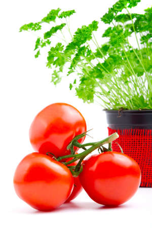 Red tomato with parsley isolated on white background  photo