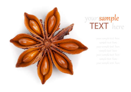 anisetree: Whole Star Anise isolated on white background, with copy space Stock Photo