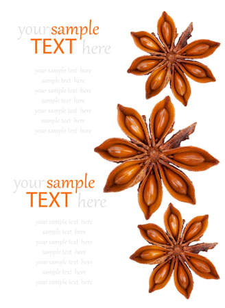 badian: Whole Star Anise isolated on white background, with copy space Stock Photo