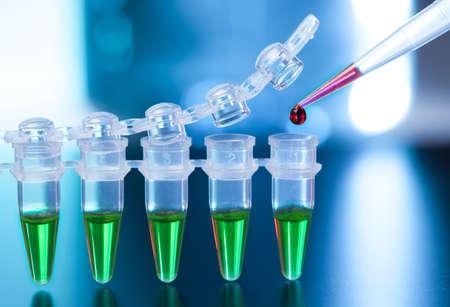 Laden der PCR-Proben in nummerierten Kunststoffrohre Standard-Bild