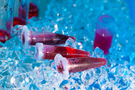 reagents: reaction plastic tube in a box full of ice
