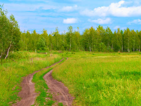 dirt road in the summer, plain photo