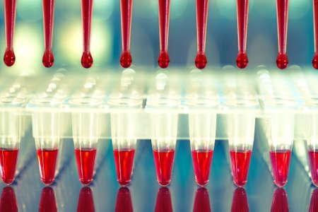 amplification: Outils pour l'amplification par PCR de l'ADN: plaque de 96 puits et pipette automatique