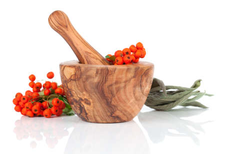 herbalist: wooden mortar with Ashberry, on white background