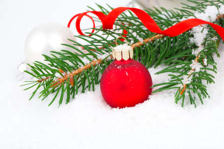 covered with snow branch of a Christmas tree and red ball on snow background photo