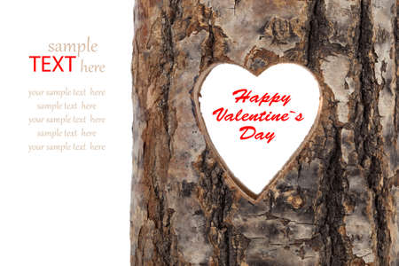 heart cut in hollow tree trunk. on white  photo