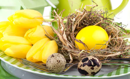 Easter eggs in a plate, on a white background photo