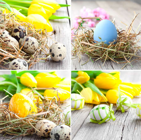 Setof Easter eggs on wooden background photo