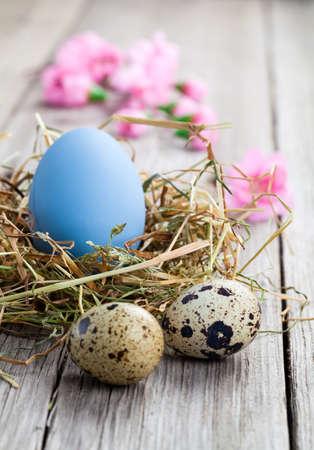 easter nest: Easter eggs on wooden background