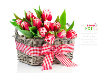 spring tulips in wooden basket, on white background. happy mothers day, romantic still life, fresh flowers photo