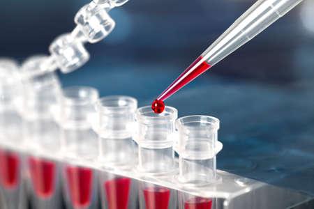 ubes voor DNA amplificatie door PCR Stockfoto