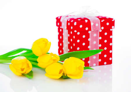 yellow tulip flowers with red polka-dot gift box  on white background  happy mothers day, romantic still life, fresh flowers photo