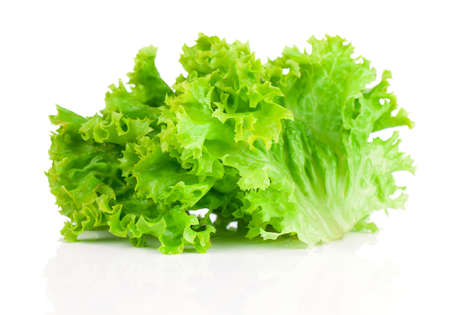 Lettuce  Salad leaves isolated on white background Stock Photo