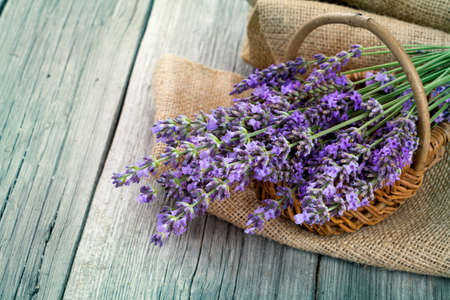 herbs of provence: lavender flowers in a basket with burlap on the wooden background Stock Photo