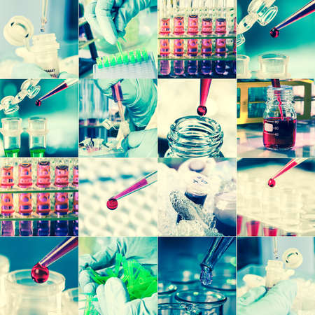 Work in the microbiology laboratory, medical research set photo