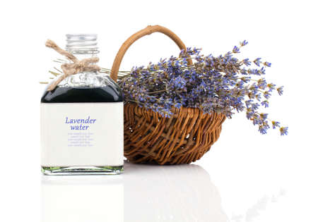 lavender bushes: dry lavender flower in a basket with lavender water, isolated on white background