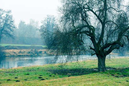 Beautiful morning mist landscape near a small river. photo