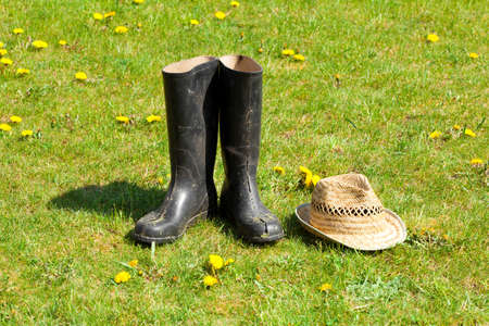 rubber plant: Rubber boots with straw on grass background. Stock Photo